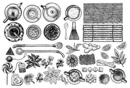 Tea and Herbal Tea shop set vector illustration. Vector design with tea ingredients. Hand drawn sketch collection. Engraved style. Banco de Imagens - 152426390