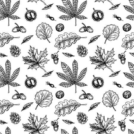 Chestnuts seamless pattern. Chestnut leaves and fruits sketch seamless background.