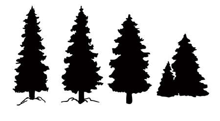 Set of vector Christmas tree silhouettes, traced outline, detailed silhouette of fir trees. Pine trees, conifers silhouettes Ilustração