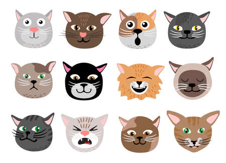 Cute cats face emotions. Funny funny cat characters faces, animals emotion set, happy and angry, sad and haughty mood heads. Isolated vector illustration.
