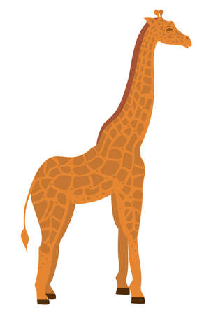 Giraffe in flat style. Vector illustration isolated on the white background. African animals. Wild animal vector. Giraffe icon