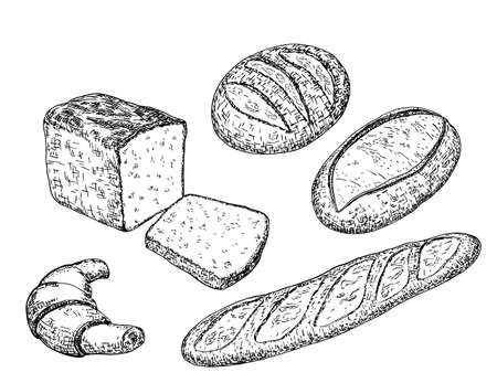 Bread sketches with long loaves, baguette, wheat and rye bread, croissant. Bakery and pastry products in vintage engraving style for food design. Sketch vector illustration