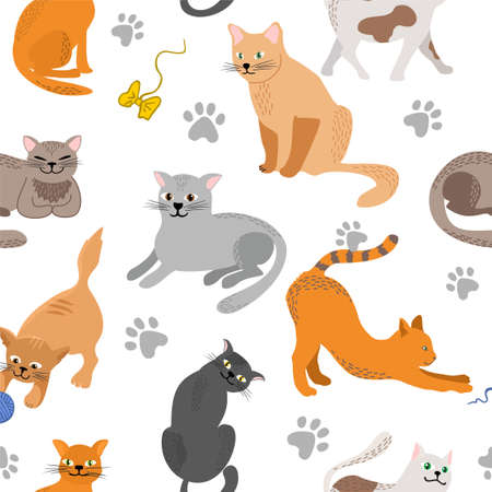 Kitty seamless pattern. Different cat breeds flat illustration. Color cute cats background, colorful kittens texture for animals baby fabric design, decor. Decorative background with various pet 矢量图像