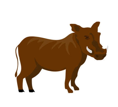 Cartoon flat warthog. Vector illustration. Wild boar. Drawing animal for children. Zoo for kids.
