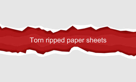 Torn horizontal white paper for text or message on a red background. Vector illustration of torn white paper with red background suitable for pasting text