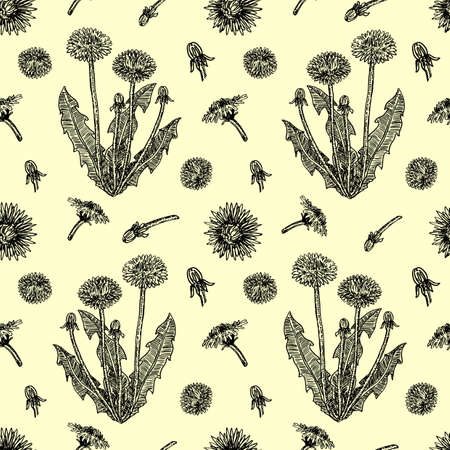 Graphic hand drawn dandelions. Cover page template with dandelions based on seamless pattern. Vector sketch seamless pattern. For wallpaper, pattern fills, web page background, surface textures