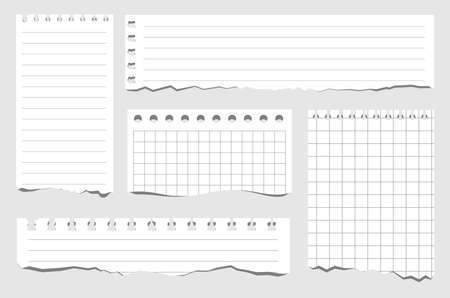 Set of pieces of paper of different types. Torn notebook papers. Blank gridded notebook ripped out papers. Vector illustration white paper sheets of square with cell horizontal line and perforation
