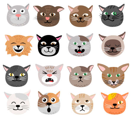 Funny cat face set vector illustration emotions Cute animal face cat heads collection