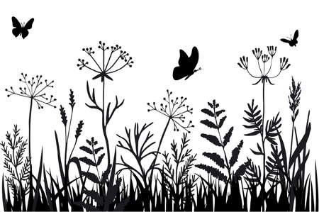 Black silhouettes of grass, flowers and herbs isolated on white background. Hand drawn sketch flowers and insects. Background herbs natural silhouette. Vector