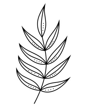 Leaf line art. Contour drawing. Minimalism art. Modern decor. Tropical palm leaves. Exotic botanical flower. Isolated illustration element. For background, texture, wrapper pattern, frame or border.