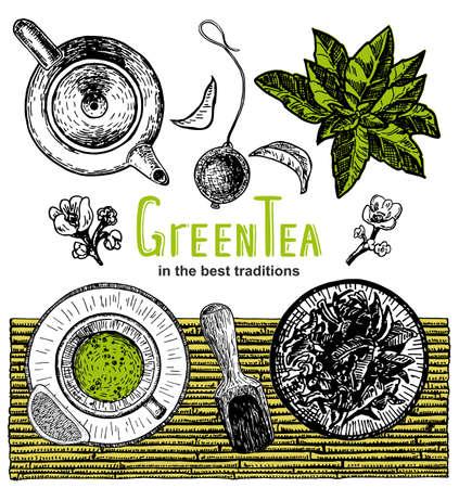 Vector hand draw tea. Tea shop banner set. Banner for tea design. Green tea card. Menu background design. Sketch graphics illustration. 矢量图像