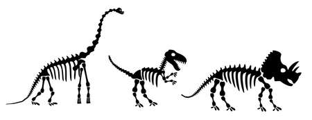 Dinosaur silhouettes set. Silhouette of dinosaur skeletons, dinosaur bones. Diplodocus, Tyrannosaurus rex, Triceratops. Modern vector flat design image isolated on white background.