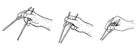 How to use chopsticks, simple vector illustration guide. Set of Hand holding chopsticks. Sketch Vector illustration. 矢量图像
