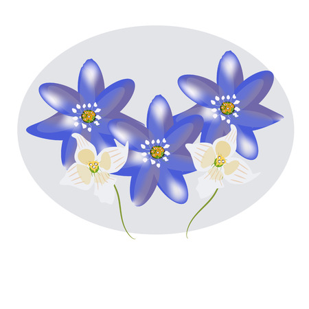 Beautiful pring flowers, yellow blue and white.