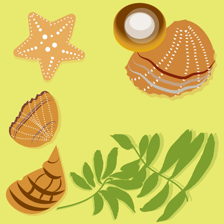 Flat palm leaves and beach seashells on the yellow board, vector