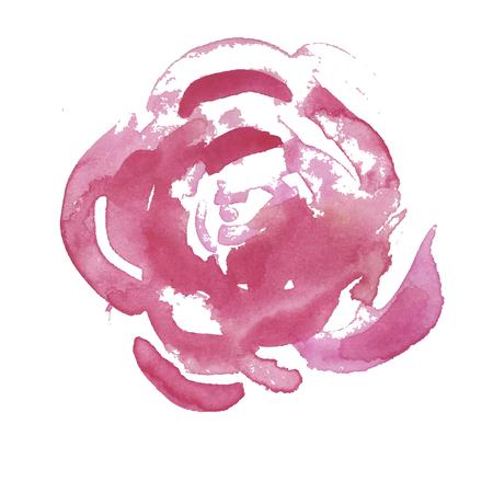Bellissimo fiore rosa chiaro rosso isolato su sfondo bianco. Illustrazione vettoriale, acquerello in fiore