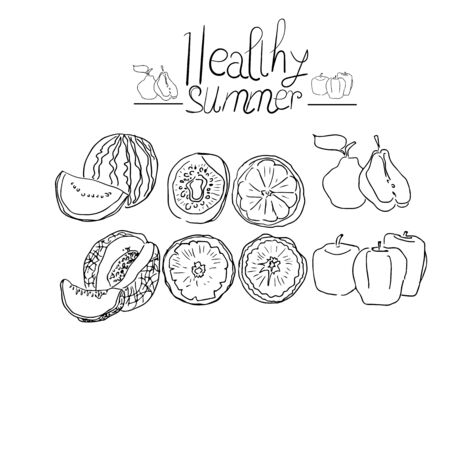 Fruits sketch. Vector isolated icons of melon and watermelon,orange and kiwi. Sketched apple. Fresh lemon, Cover for fruit package. Healthy summer Ilustracja