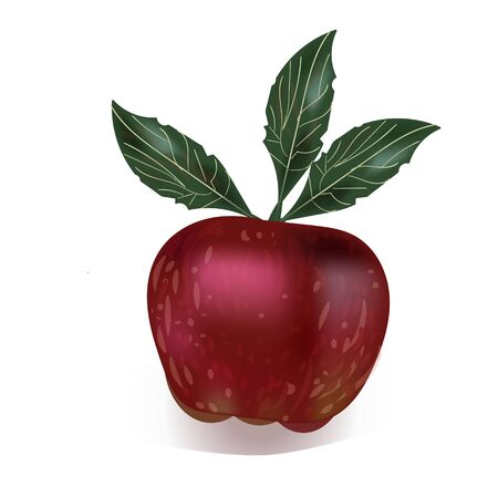 red Apple in vector design as food icon for banner Vectores