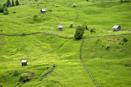 Summer Landscape in North of Romania photo