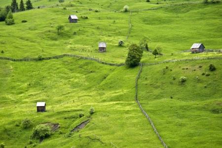Summer Landscape in North of Romania Stock Photo - 17348788