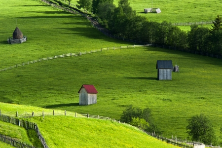 Summer landscape in North of Romania