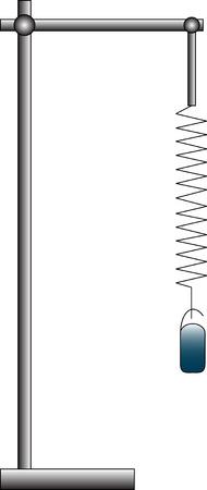 pendulum: Spring pendulum with weight