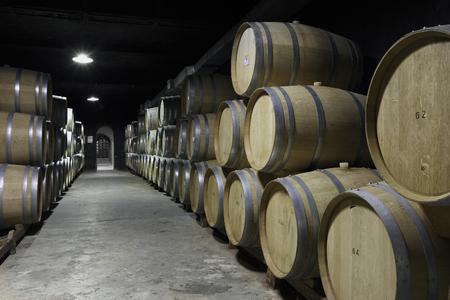 Vineyard and wooden barrels Imagens
