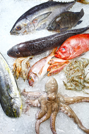 fishmonger: fishmonger of varied seafood