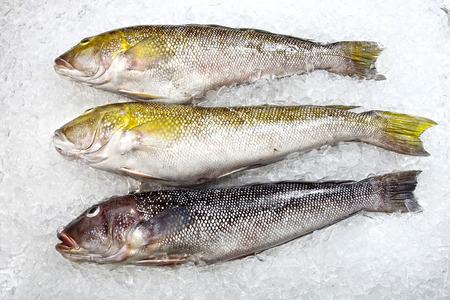 poissonnerie de fruits de mer variés
