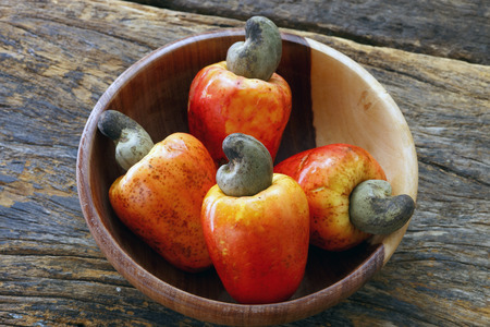 tree with leaves: Cashew fresh originating from Para, Brazil