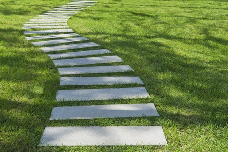 tortuous: stone path on the grass