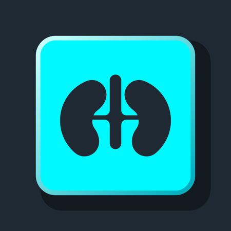 renal: Kidneys icon Illustration