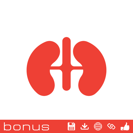 nephrology: Kidneys icon Illustration