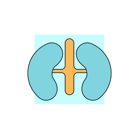 Kidneys icon Illustration