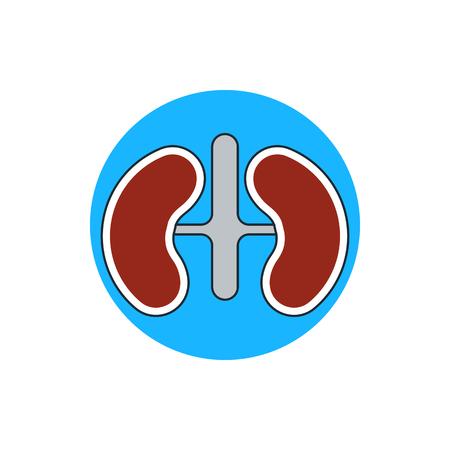 nephrology: Kidneys icon Illustration