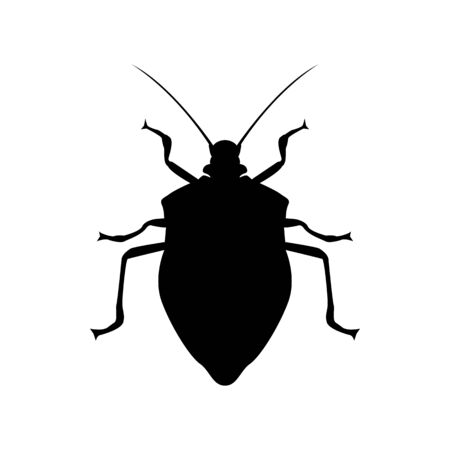 Bedbug insect silhouette illustration