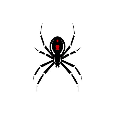 Black spider silhouette, close-up spider, scary big spider isolated on white, poisonous isect, arachnophobia background, spider vector icon