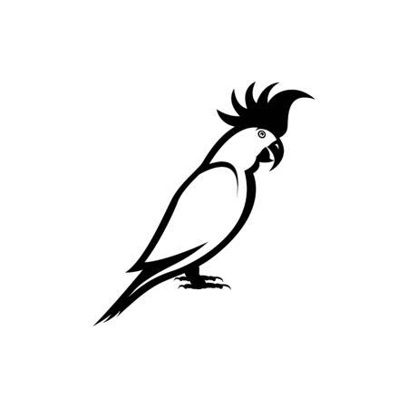 parrot vector illustration
