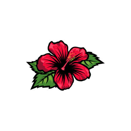 Vintage red blooming hibiscus flowers concept on white background isolated Floral tropical flower. Wild summer exotic leaf wildflower vector illustration. hibiscus element Idea for business visit card, typography vector, print for t-shirt. Illustration