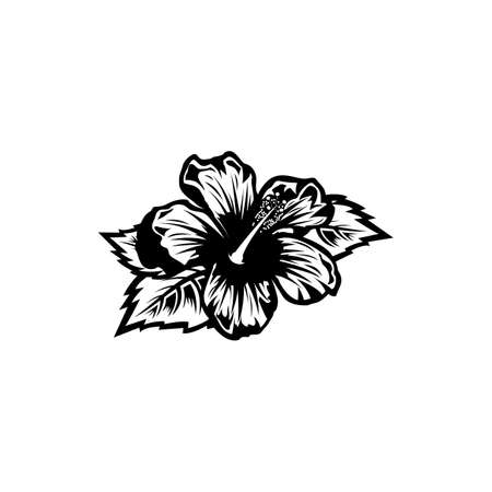 Vintage black and white blooming hibiscus flowers concept on white background isolated Floral tropical flower. Wild summer exotic leaf wildflower vector illustration. hibiscus element Idea for business visit card, typography vector, print for t-shirt. Illustration