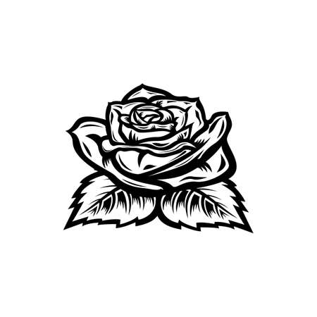 Vintage black and white blooming rose concept on white background isolated Floral botanical flower. Wild spring leaf wildflower vector illustration. Roses element Idea for business visit card, typography vector, print for t-shirt.
