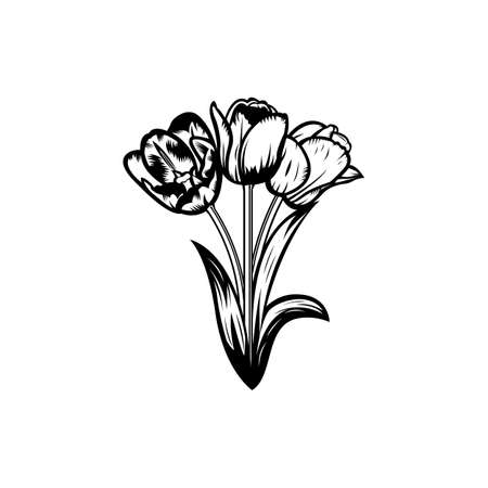 Vintage black and white blooming tulips concept on white background isolated Floral botanical flower. Wild spring leaf wildflower vector illustration. Idea for business visit card, typography vector, print for t-shirt.