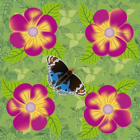 Flower and butterfly seamless pattern Stock Vector - 10057044