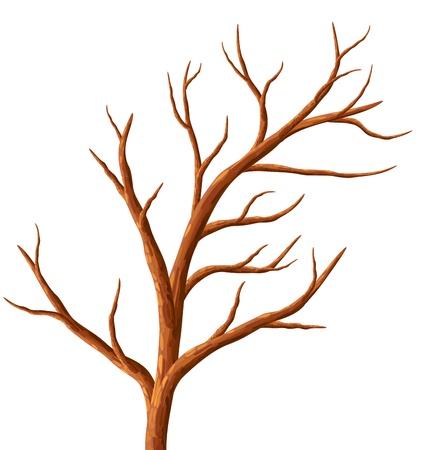 Tree without leaves, illustration. Ilustrace