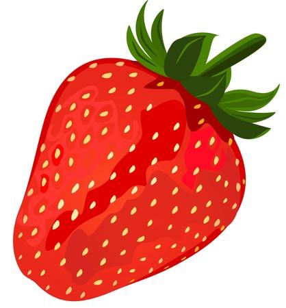 Ripe red strawberries Vetores