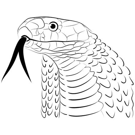 Stylized Snake Head Line Drawing
