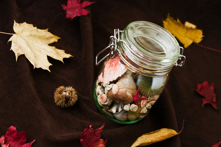changing seasons: Concept of changing seasons still life summer in jar or jared summer in autumn setting with red and yellow leaves and chestnut burr as decoration. Selective focus on red sea star.
