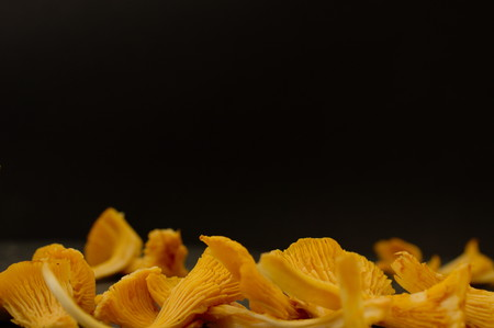 negative space: Colorful orange freshly picked chanterelle forrest mushrooms on dark stone slate surface. Selective focus. Negative space. Copy Space. Stock Photo