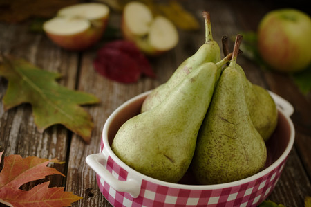 concorde: Four Concorde variety green pears in pink dish with apples and leaves, autumn, fall, seasonal decoration, on wood table in rustic setting. Selective focus on pear style.