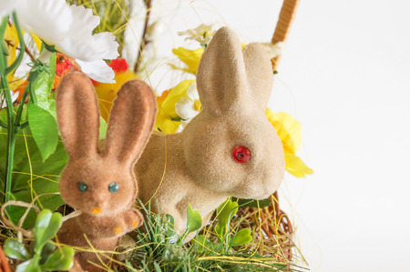lop eared: Pair of Easter rabbits
